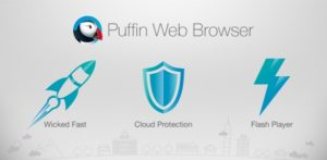 Puffin Browser Pro 7.8.3.40913 Apk